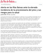 Alert in the Rías Baixas due to the high incidence of the pine processionary caterpillar and the potential risks for health